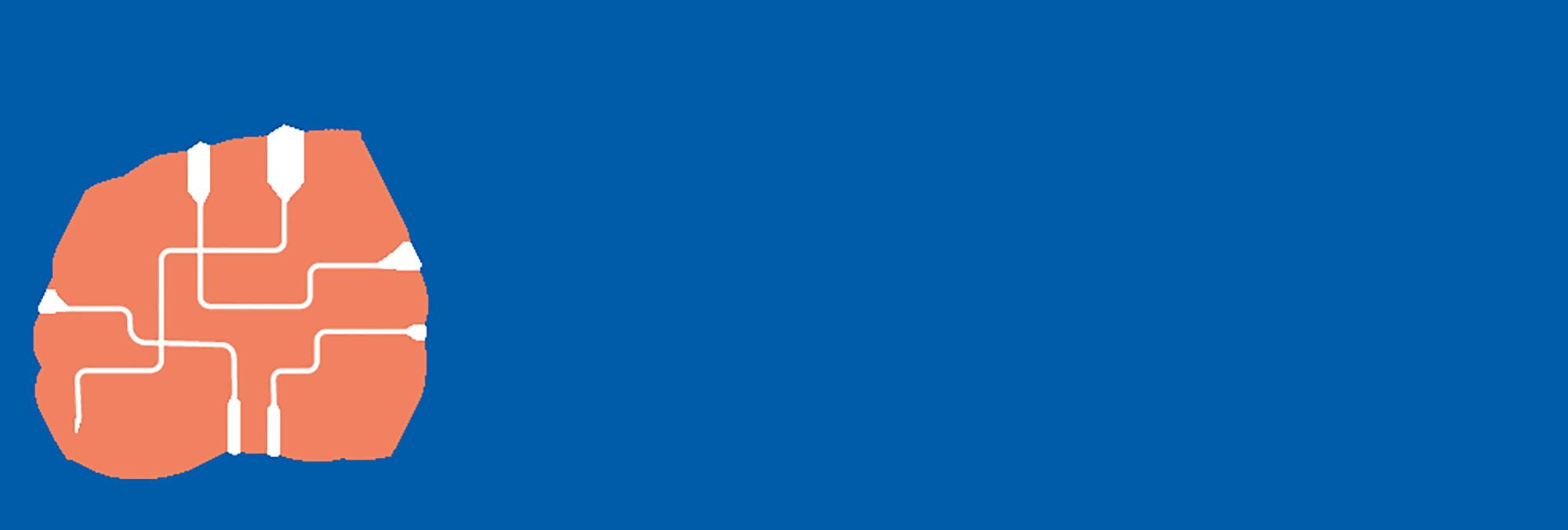 Corporate Brain